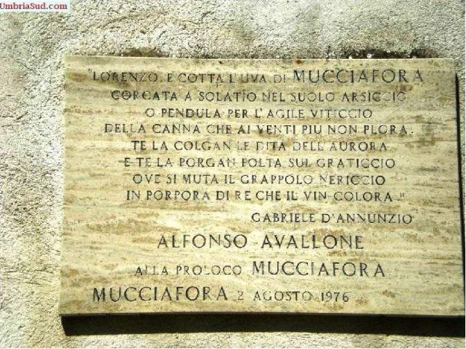 Il vino di Mucciafora tanto caro a D'Annunzio